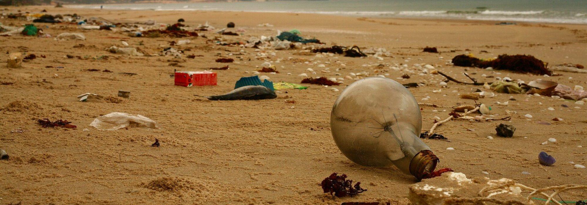 beach-4914403_1920